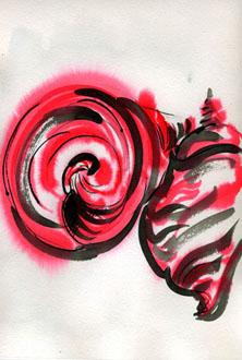 shells-in-ink020126.jpg