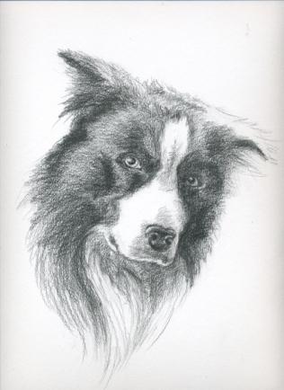 Benji drawing01